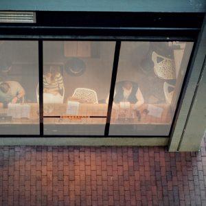 SQUID Folia na szybę, tkanina na szybę, roleta naklejana na szybę - okno, Roletix producent rolet, żaluzji, moskitier, plis, żaluzji fasadowych, rolet rzymskich -5